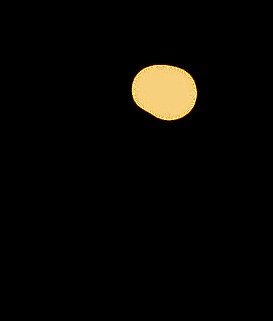 Wanapum Map Overlay