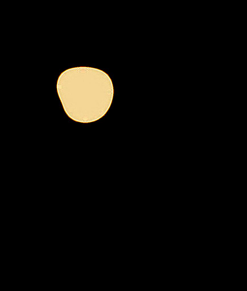 Cowlitz Map Overlay