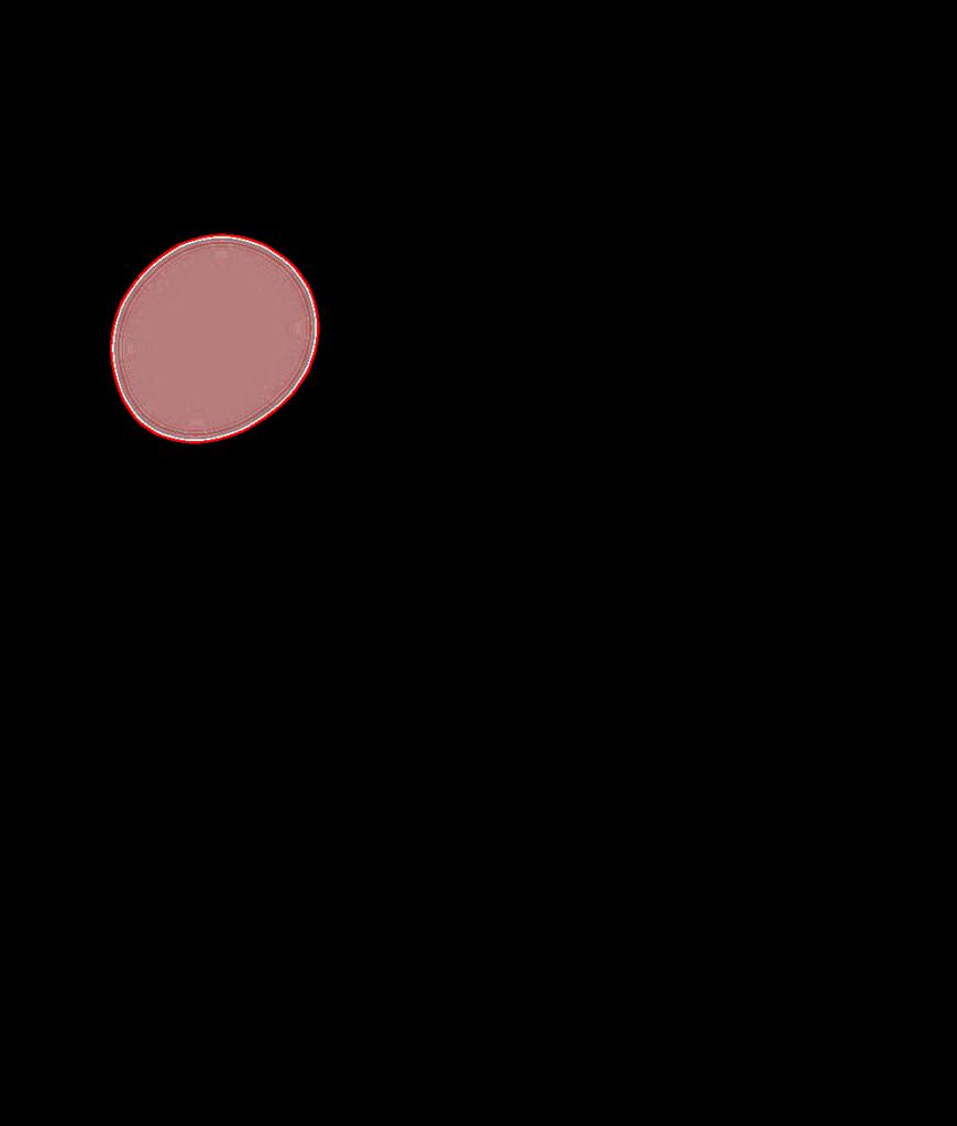 Chinook Map Overlay